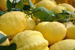 limone-di-amalfi-igp
