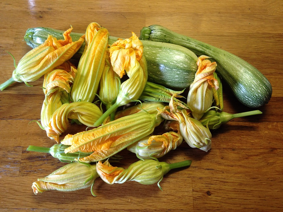 Sagra della zucca e della zucchina. Pogerola